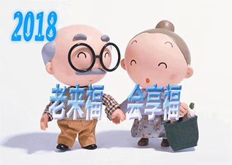 【养老新品】太平洋老来福B(2018)保险计划